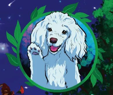 Image of Lovely the dog