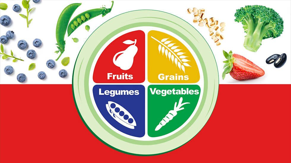 Image of the Vegan 4 food groups