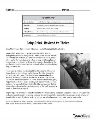 Image of pdf page
