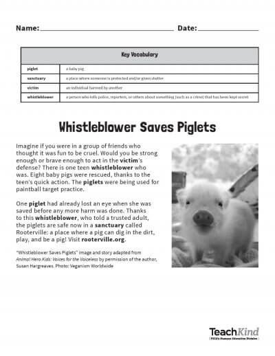 Image of pdf page Whistleblower saves piglet